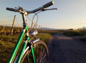 Vélo de ville révisé