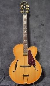Guitare Jazz Aria FA71