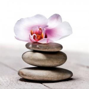 massage geneve zen aux eaux vives