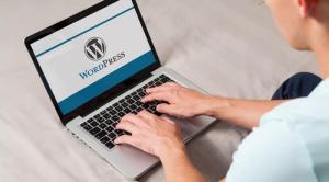 Formation WordPress - PRO - en visioconférence