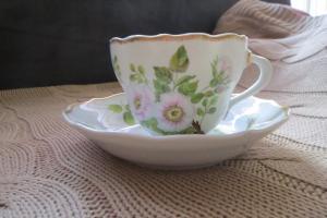 Hutschenreuter tasse et assiette à café