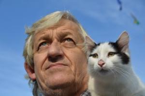 Vends rares chatons nageurs Turcs Van