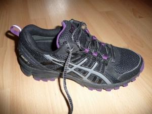 Asics Gel-Trail Lahar 4 GTX // 38-39
