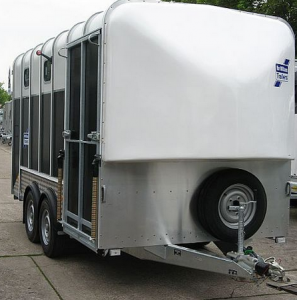 Van Ifor Williams HB 610