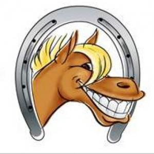 Dentiste équin - Dentisterie équine