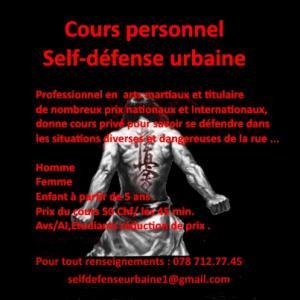 Cours personnel de Self-défense urbaine.