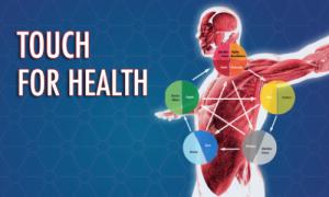 Kinesiologie-Santé par le toucher