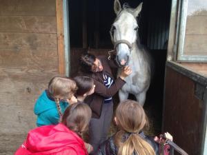 Cours d'équitation/voltige pour enfant