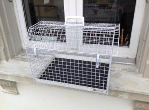 Cage à chat