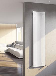 Radiateur Arbonia Creatherm vertical 2S110-1100