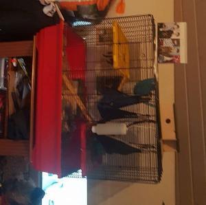 cage a vendre