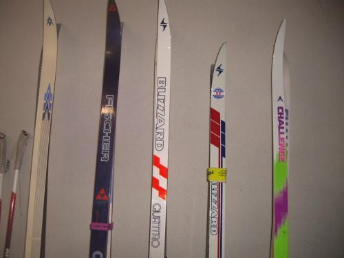 Lot de skisd de fond écailles et micropore