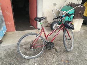 Magnifique Vélo Louville Challenger