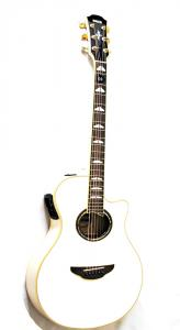 Yamaha APX 1000 PW Pearl White