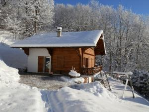 Location chalet. VILLARS/OLLON