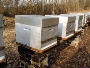 Vends ruches Neuves 10 cadres complètes