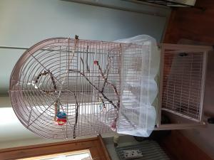 A vendre cage oiseaux sur roulettes