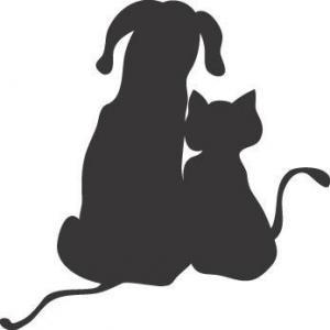 Action aliments NATURELS pour chien chat