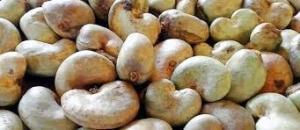 vente des produits agricoles