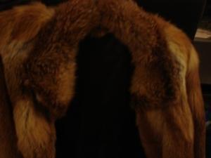 fourrure de renard roux