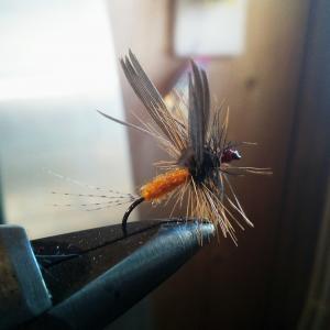 Guide accompagnateur de pêche à la mouche.