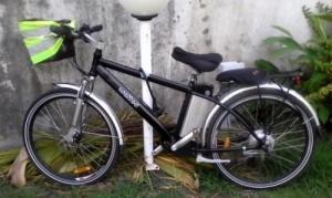 Vélo électrique très bon état