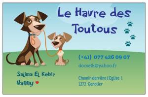 Nanny pour chiens, Dog-sitter