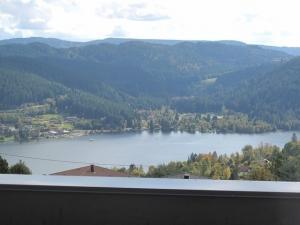 FR - Gérardmer villa neuve vue lac